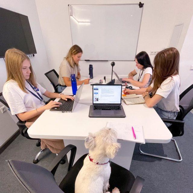 Happiness Manager проводит совещание с HR Team💚
